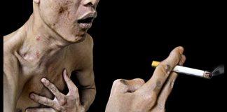 Tác hại của thuốc lá với sức khỏe con người