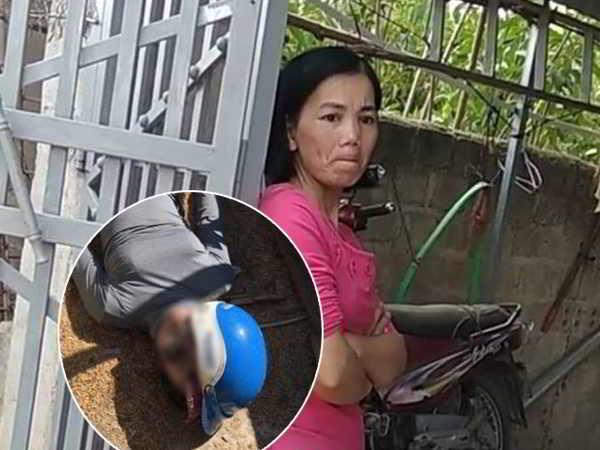 Bao che tội phạm trong vụ sát hại nữ sinh giao gà Bùi Kim Thu có thể đối diện mức án nào?