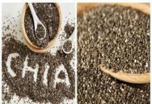 Công dụng của hạt Chia với sức khỏe con người