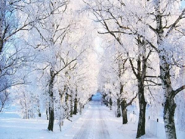 Mơ thấy tuyết điềm lành hay giữ