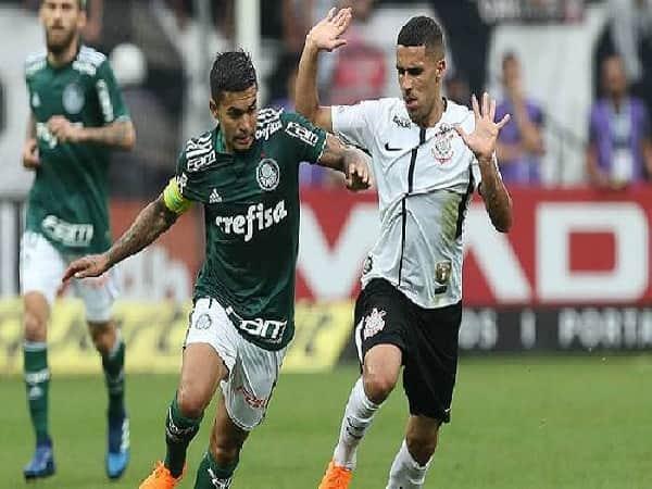 Nhận định America Mineiro vs Palmeiras 7/10